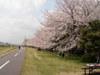 f:id:honda-jimusyo:20100410123926j:plain