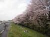 f:id:honda-jimusyo:20100410125945j:plain