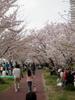 f:id:honda-jimusyo:20100410140549j:plain