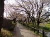 f:id:honda-jimusyo:20100410160137j:plain
