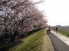 f:id:honda-jimusyo:20100410163414j:plain