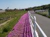 f:id:honda-jimusyo:20100425130112j:plain