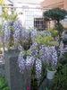 f:id:honda-jimusyo:20100425141459j:plain