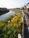 f:id:honda-jimusyo:20100425163248j:plain