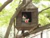 f:id:honda-jimusyo:20100430131956j:plain