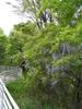 f:id:honda-jimusyo:20100502112053j:plain