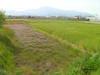 f:id:honda-jimusyo:20100502140952j:plain