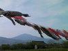 f:id:honda-jimusyo:20100502152141j:plain