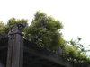 f:id:honda-jimusyo:20100502165005j:plain