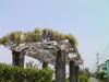 f:id:honda-jimusyo:20100505113135j:plain