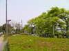 f:id:honda-jimusyo:20100505113806j:plain