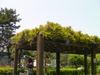 f:id:honda-jimusyo:20100505114340j:plain