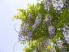 f:id:honda-jimusyo:20100505124617j:plain