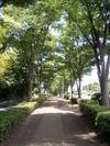 f:id:honda-jimusyo:20100717103616j:plain