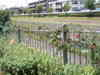 f:id:honda-jimusyo:20100717113803j:plain