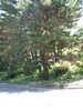 f:id:honda-jimusyo:20100717121513j:plain