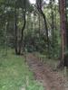 f:id:honda-jimusyo:20100731150159j:plain
