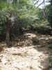 f:id:honda-jimusyo:20100904115237j:plain