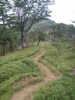 f:id:honda-jimusyo:20100904140730j:plain