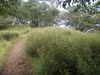 f:id:honda-jimusyo:20100904145226j:plain