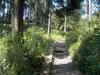 f:id:honda-jimusyo:20100911104748j:plain