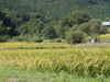 f:id:honda-jimusyo:20100918102537j:plain