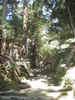 f:id:honda-jimusyo:20100918103500j:plain