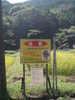 f:id:honda-jimusyo:20100918104942j:plain