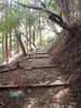 f:id:honda-jimusyo:20100918124815j:plain
