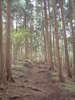 f:id:honda-jimusyo:20100918131034j:plain