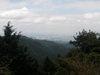 f:id:honda-jimusyo:20100918132549j:plain