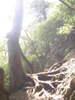 f:id:honda-jimusyo:20100918133617j:plain