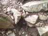 f:id:honda-jimusyo:20100918133741j:plain