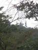 f:id:honda-jimusyo:20100918141505j:plain