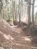 f:id:honda-jimusyo:20100918151145j:plain