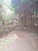 f:id:honda-jimusyo:20100918152249j:plain