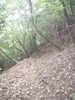 f:id:honda-jimusyo:20100918152843j:plain
