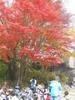 f:id:honda-jimusyo:20101113114125j:plain