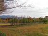 f:id:honda-jimusyo:20101120100349j:plain