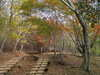 f:id:honda-jimusyo:20101120110137j:plain