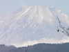 f:id:honda-jimusyo:20101120114010j:plain