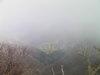 f:id:honda-jimusyo:20101120125013j:plain