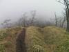 f:id:honda-jimusyo:20101120131146j:plain