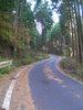 f:id:honda-jimusyo:20101204110000j:plain
