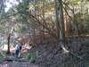 f:id:honda-jimusyo:20101204112550j:plain