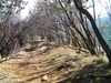 f:id:honda-jimusyo:20101204120015j:plain