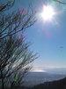 f:id:honda-jimusyo:20101204124755j:plain