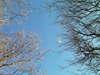f:id:honda-jimusyo:20101204124930j:plain