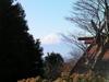 f:id:honda-jimusyo:20101204130937j:plain