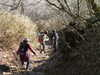 f:id:honda-jimusyo:20101204134858j:plain